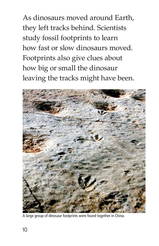 Book Preview For Discovering Dinosaurs Page 10
