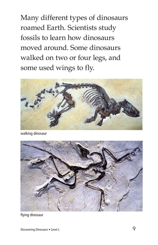 Book Preview For Discovering Dinosaurs Page 9