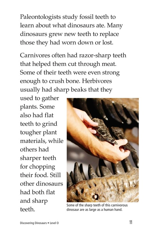 Book Preview For Discovering Dinosaurs Page 11