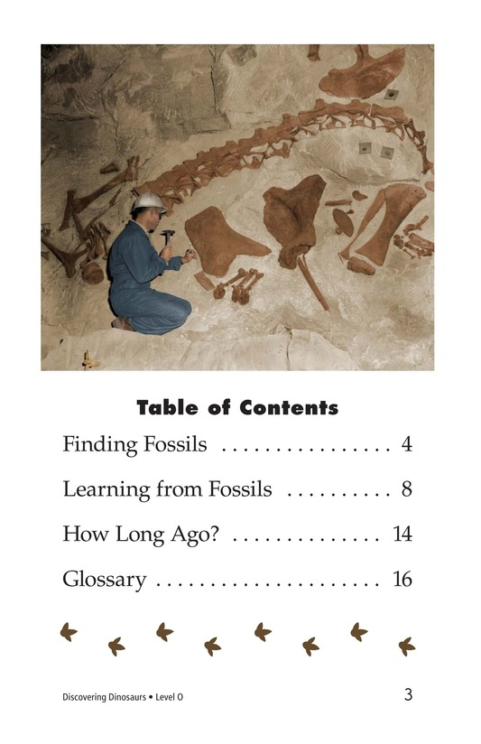 Book Preview For Discovering Dinosaurs Page 3