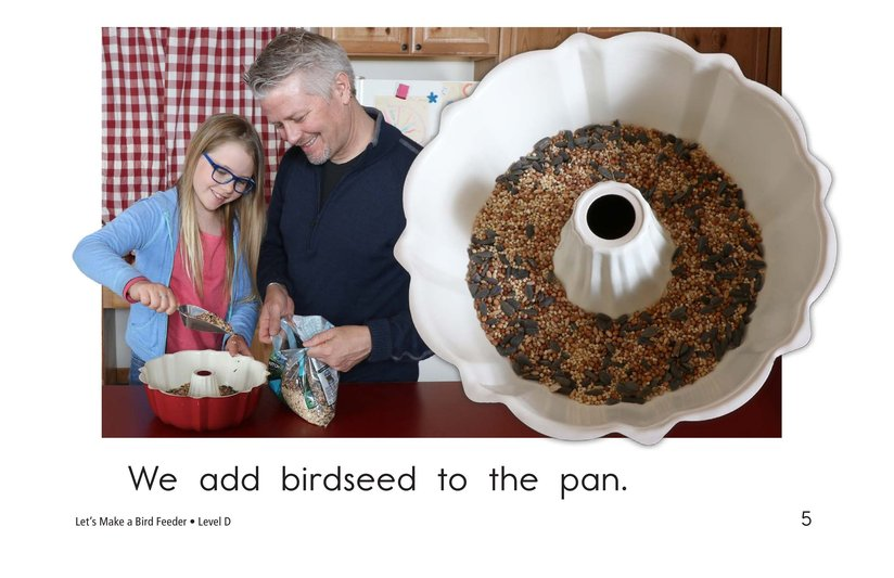 Book Preview For Let's Make a Bird Feeder Page 5