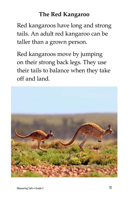 Book Preview For Measuring Tails Page 11