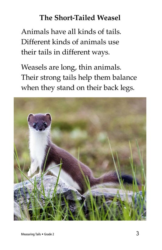 Book Preview For Measuring Tails Page 3