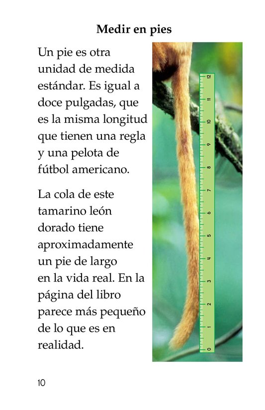 Book Preview For Measuring Tails Page 10
