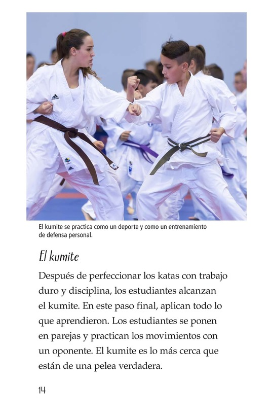 Book Preview For Karate Page 14