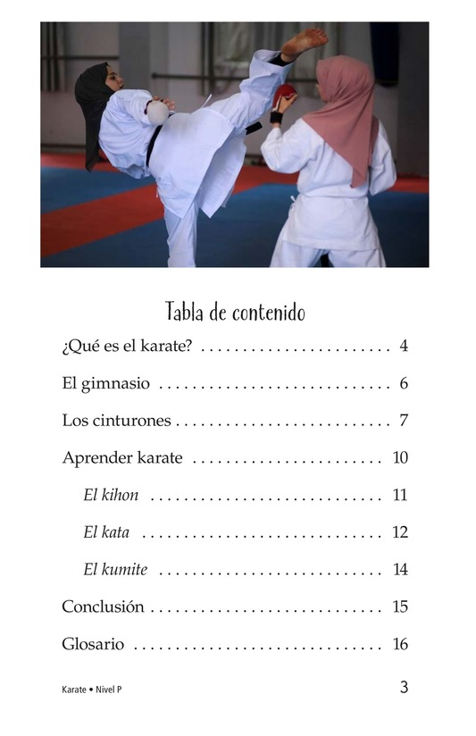 Book Preview For Karate Page 3