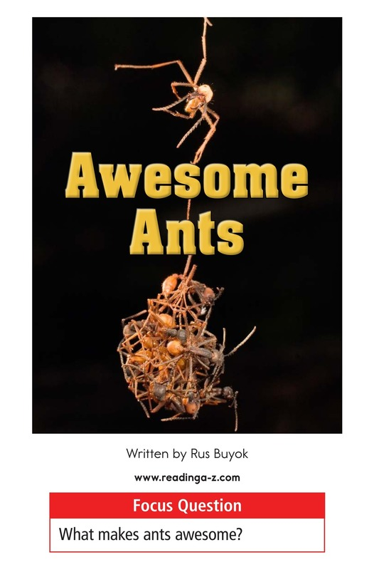 Book Preview For Awesome Ants Page 1