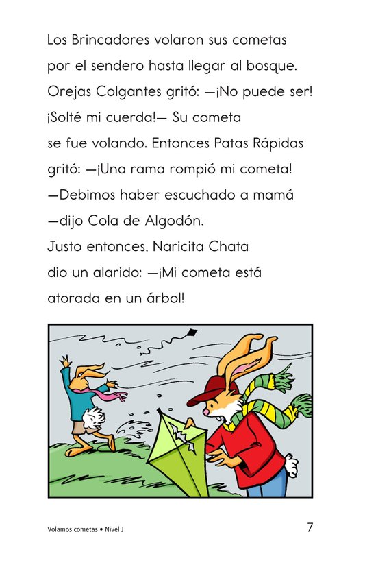 Book Preview For Flying Kites Page 7