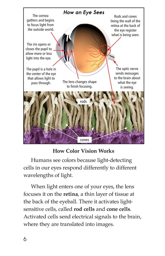Book Preview For Color Blindness Page 6