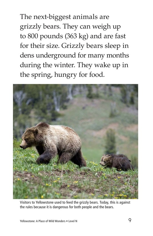 Book Preview For Yellowstone: A Place of Wild Wonders Page 9