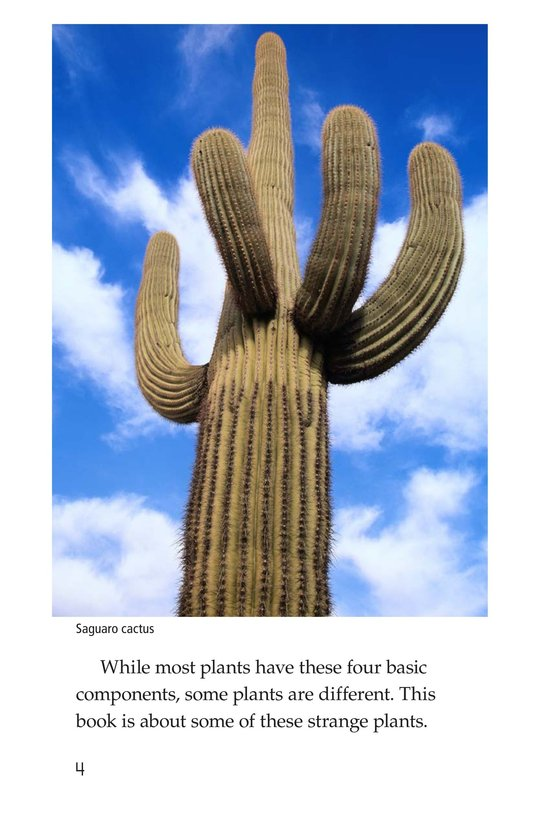 Book Preview For Strange Plants Page 4