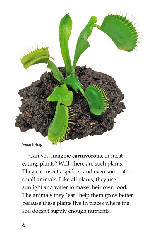 Book Preview For Strange Plants Page 6