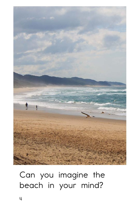 Book Preview For Imagine the Beach Page 4