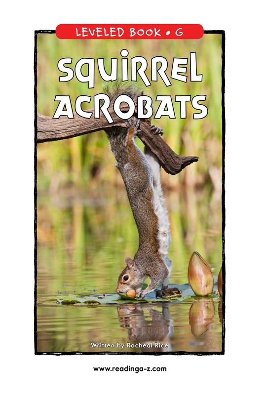 Book Preview For Squirrel Acrobats Page 0