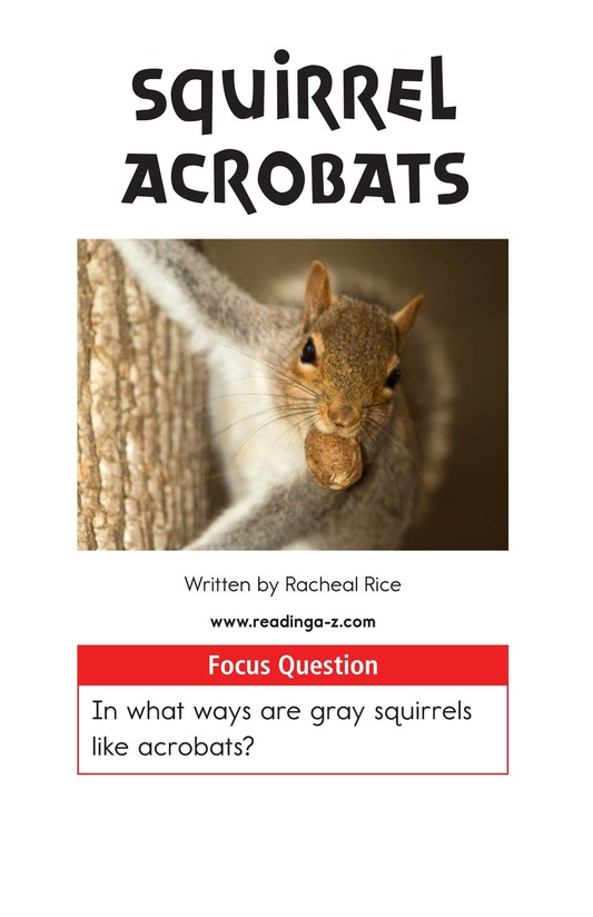 Book Preview For Squirrel Acrobats Page 1