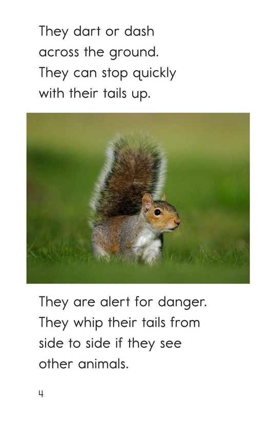 Book Preview For Squirrel Acrobats Page 4