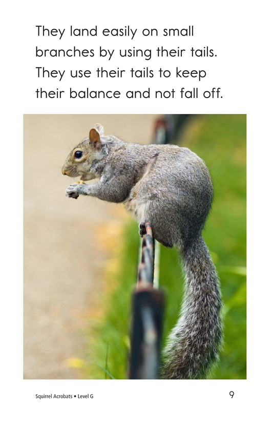 Book Preview For Squirrel Acrobats Page 9