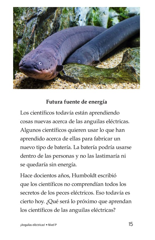 Book Preview For Electric Eels! Page 15