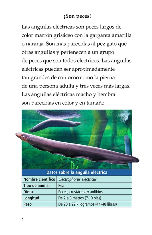 Book Preview For Electric Eels! Page 6