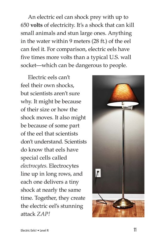 Book Preview For Electric Eels! Page 11