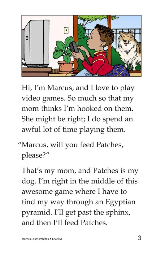 Book Preview For Marcus Loses Patches Page 3