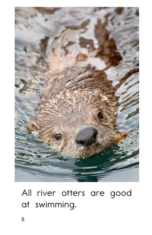 Book Preview For River Otters Page 8