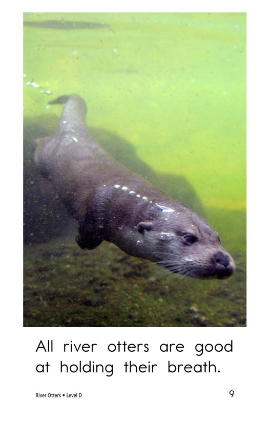 Book Preview For River Otters Page 9