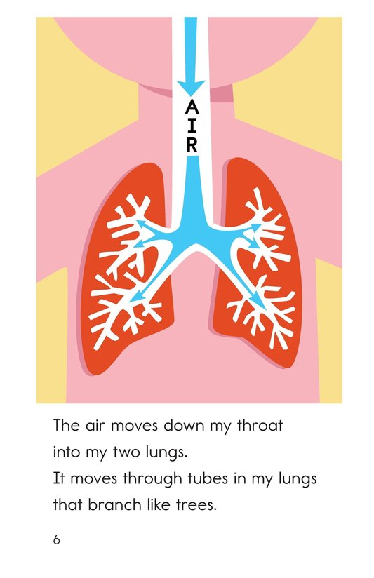 Book Preview For My Lungs Page 6