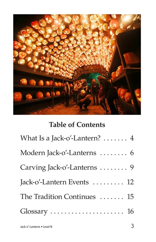 Book Preview For Jack-o'-Lanterns Page 3