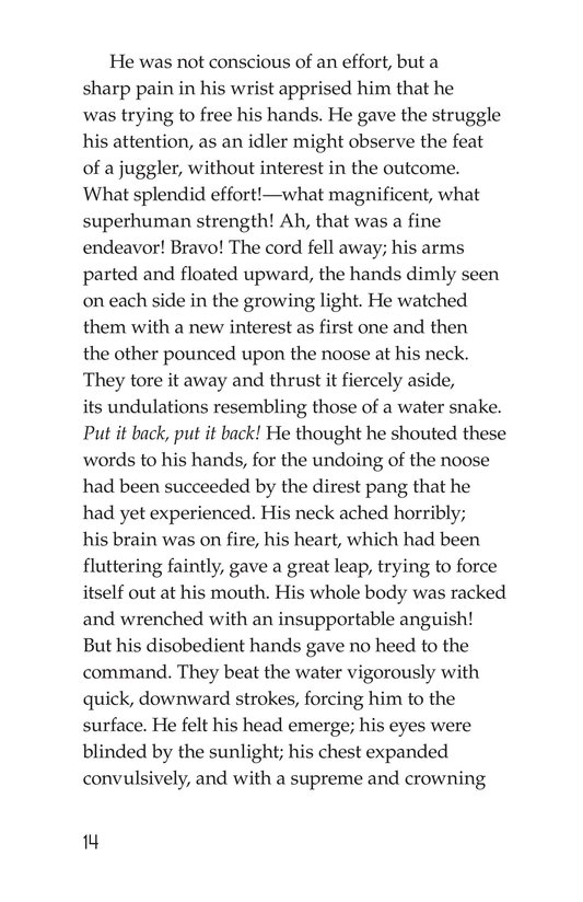 Book Preview For An Occurrence at Owl Creek Bridge Page 14
