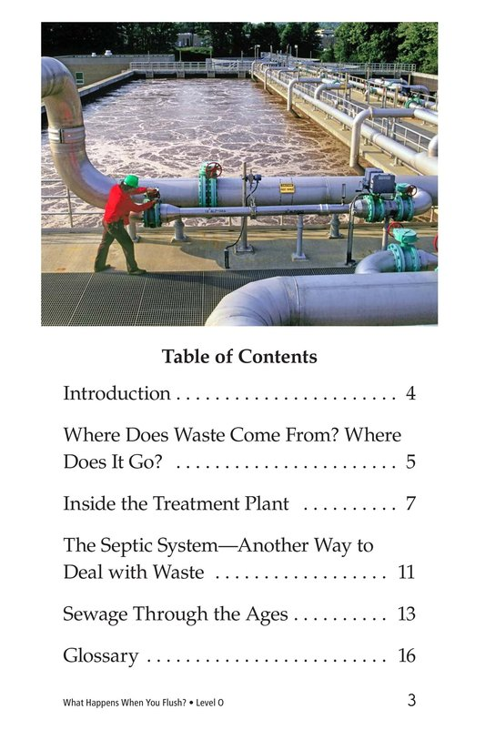 Book Preview For What Happens When You Flush? Page 3