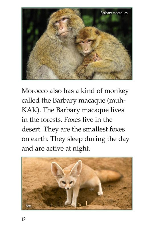 Book Preview For Morocco Page 12