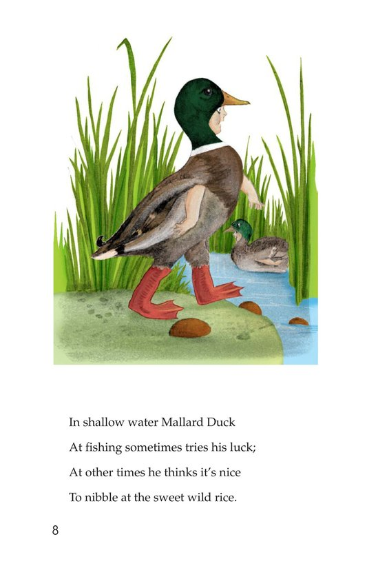 Book Preview For Bird Children Page 8