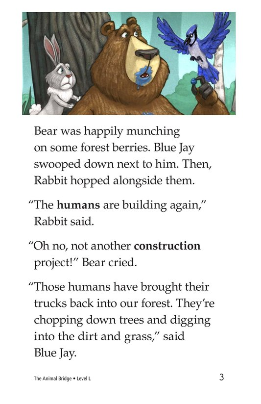 Book Preview For The Animal Bridge Page 3