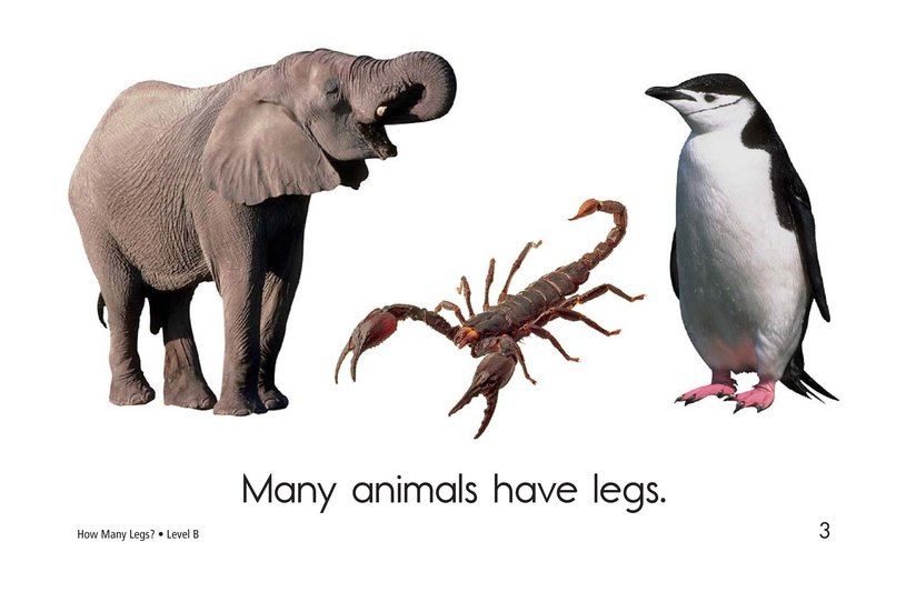 Book Preview For How Many Legs? Page 3