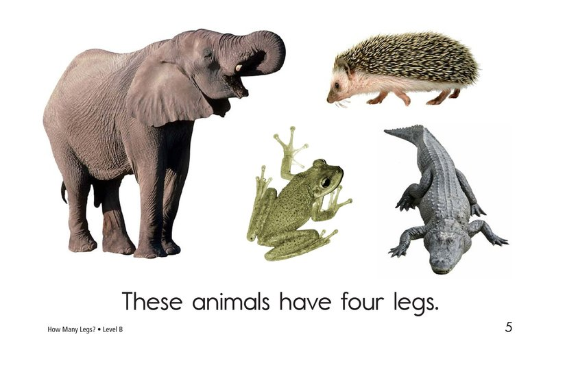 Book Preview For How Many Legs? Page 5