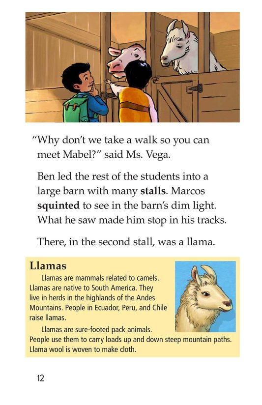 Book Preview For Rent a Llama Page 12