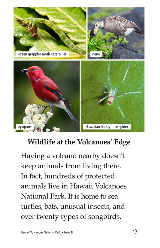 Book Preview For Hawaii Volcanoes National Park Page 13