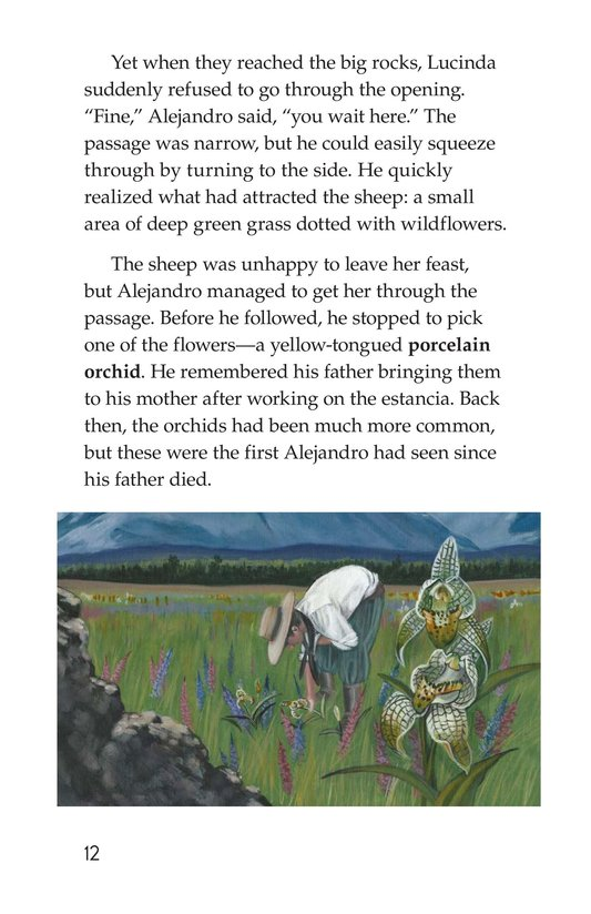 Book Preview For A Place for Wild Things Page 12