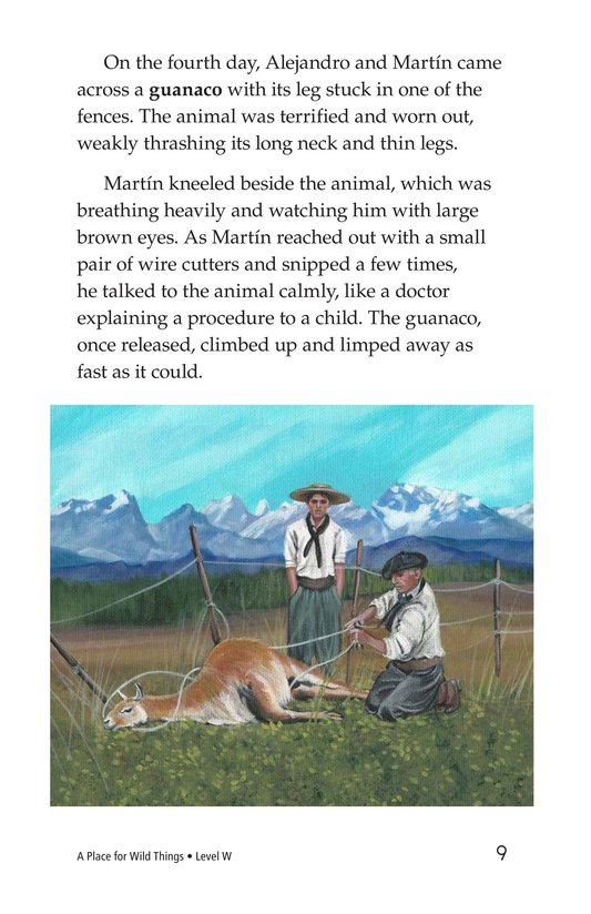Book Preview For A Place for Wild Things Page 9