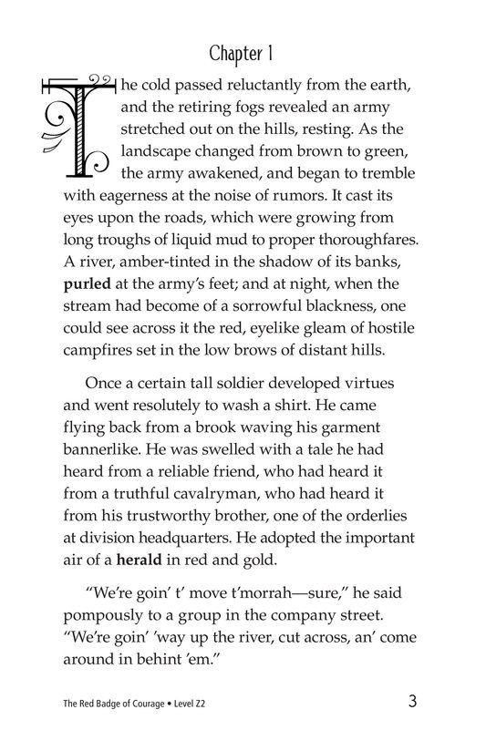 Book Preview For The Red Badge of Courage (Part 1) Page 3