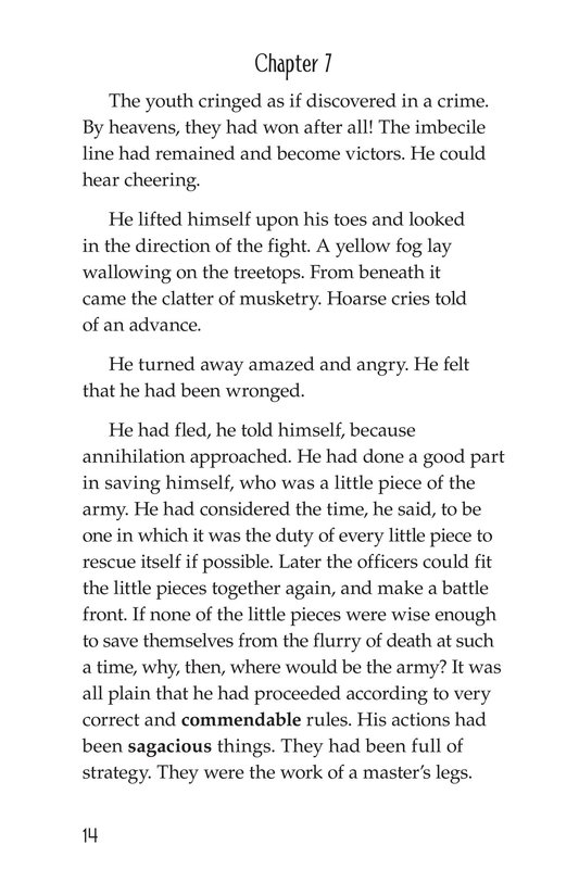 Book Preview For The Red Badge of Courage (Part 5) Page 14