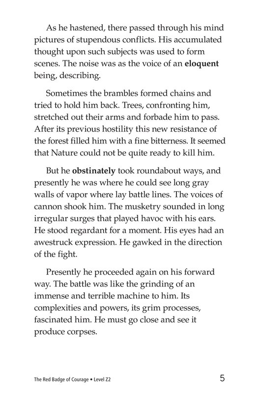 Book Preview For The Red Badge of Courage (Part 6) Page 5
