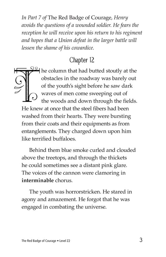 Book Preview For The Red Badge of Courage (Part 8) Page 3