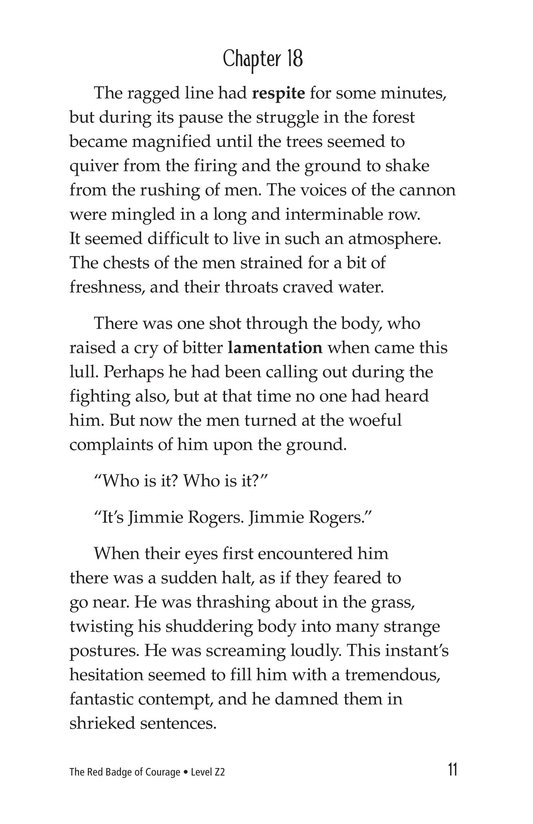 Book Preview For The Red Badge of Courage (Part 11) Page 11