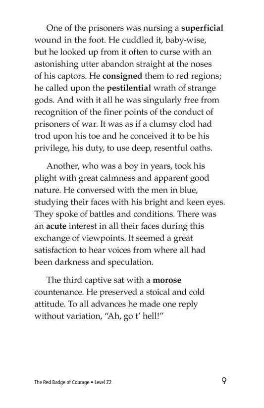 Book Preview For The Red Badge of Courage (Part 14) Page 9