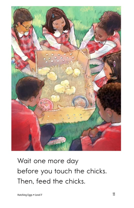 Book Preview For Hatching Eggs Page 11