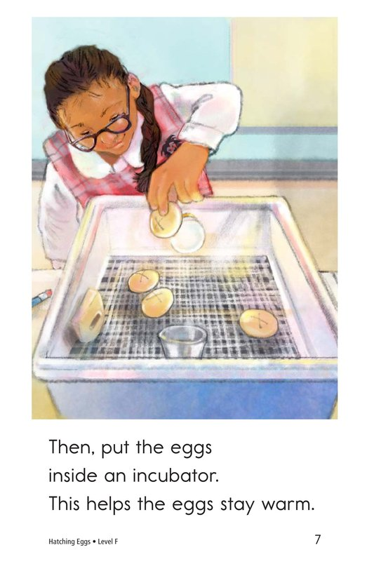 Book Preview For Hatching Eggs Page 7