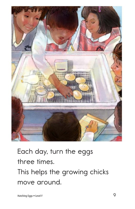 Book Preview For Hatching Eggs Page 9