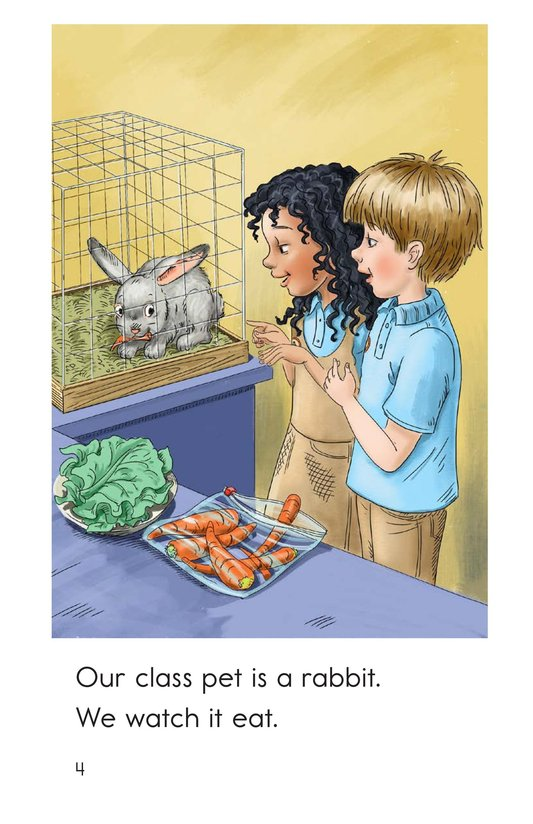 Book Preview For Class Pets Page 4
